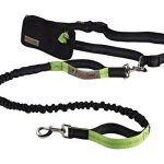 Retractable-Hands-Free-Dog-Leash-with-Dual-Bungees-for-up-to-150-lbs-Large-Dogs-0-0