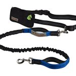 Retractable-Hands-Free-Dog-Leash-with-Dual-Bungees-for-up-to-150-lbs-Large-Dogs-0-1