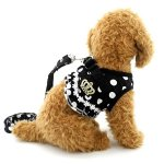 SELMAI-Puppy-Cat-Small-Girl-Dog-Dots-Vest-Harness-Leash-Set-Mesh-Padded-No-Pull-Lead-Size-Run-SmallPlease-Check-Size-Details-Carefully-Before-Purchase-0-0