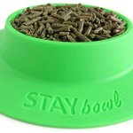 STAYbowl-Tip-Proof-Bowl-for-Guinea-Pigs-and-Other-Small-Pets-Spring-Green-Large-34-Cup-Size-New-0-1