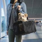 TrustyPup-Travel-Easy-Explorer-Airline-Approved-Pet-Carrier-Medium-Black-0