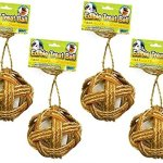 Ware-Manufacturing-4-Pack-Willow-Edible-Small-Pet-Ball-Chew-Treat-4-Inch-0