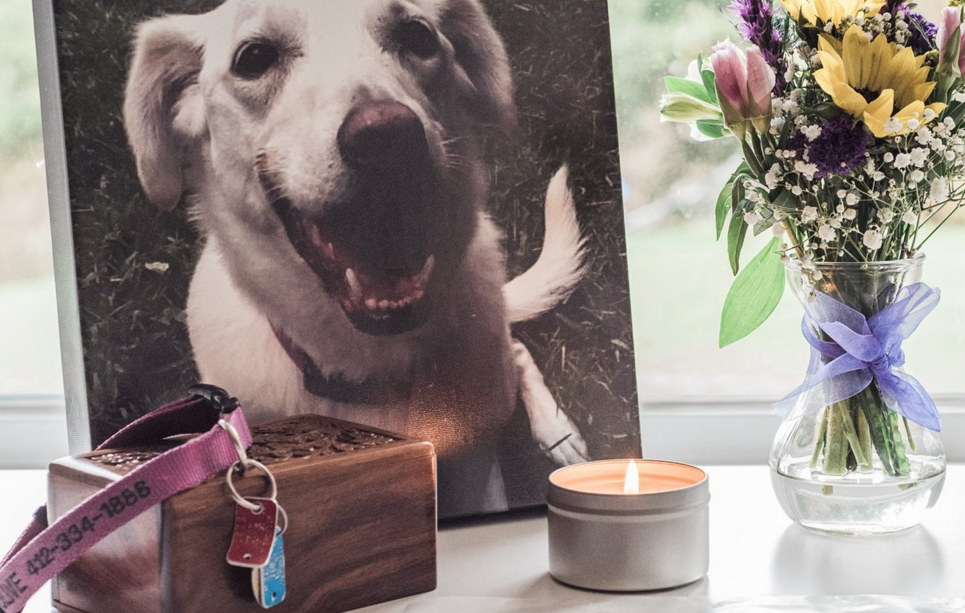 Gifts For People Who Lost Their Dog