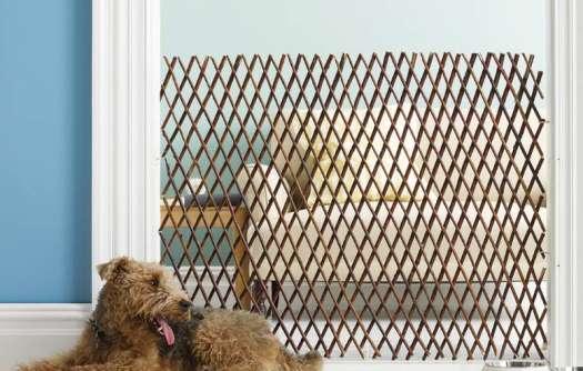 Accordion Dog Gates