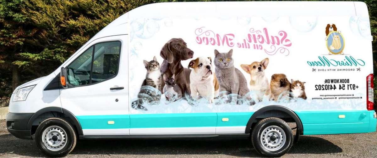 Mobile Dog Groomers Near Me