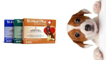 Tri Heart Plus For Dogs
