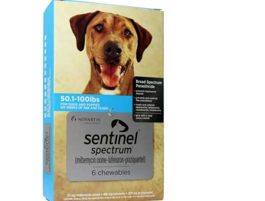 Sentinel Spectrum For Dogs 51 100 Lbs