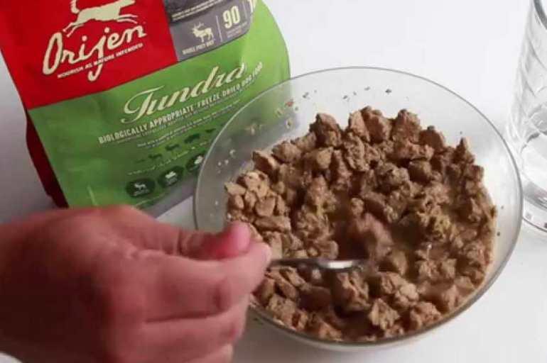 Orijen Dog Food Reviews