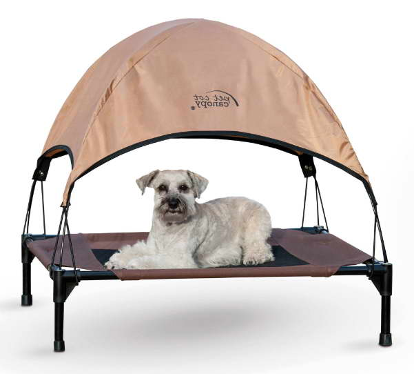 Walmart Dog Beds