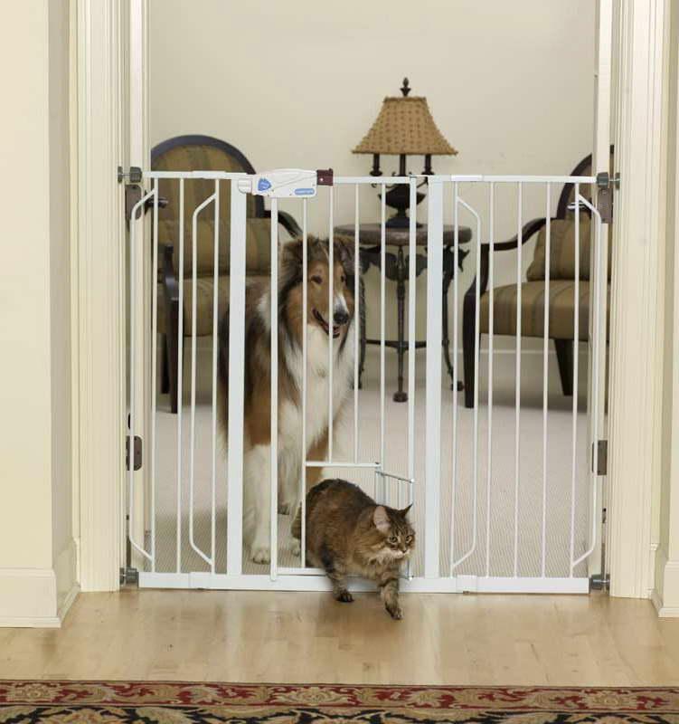 Amazon Dog Gate