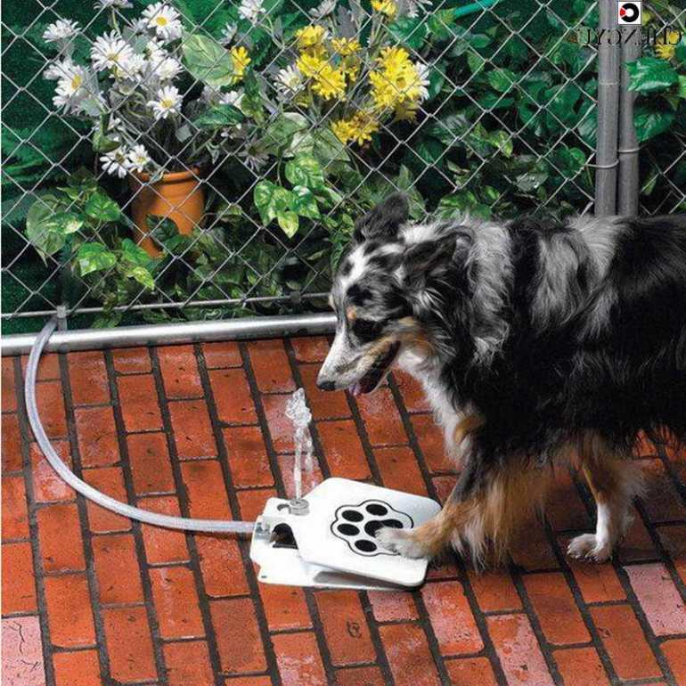 Automatic Dog Waterer Outdoor