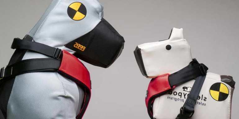 Crash Tested Dog Harness