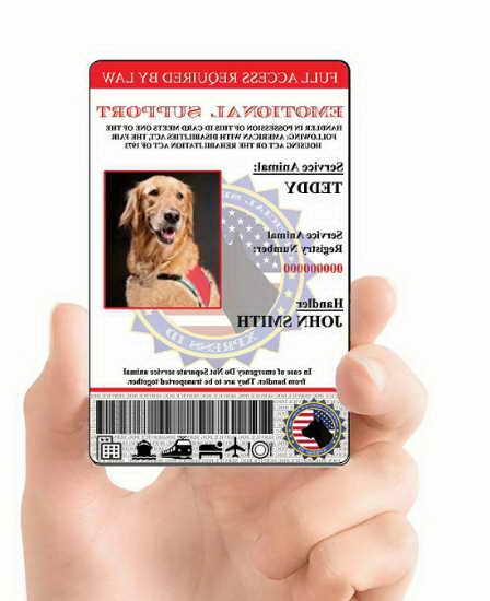 Registering Dog As Emotional Support Dog