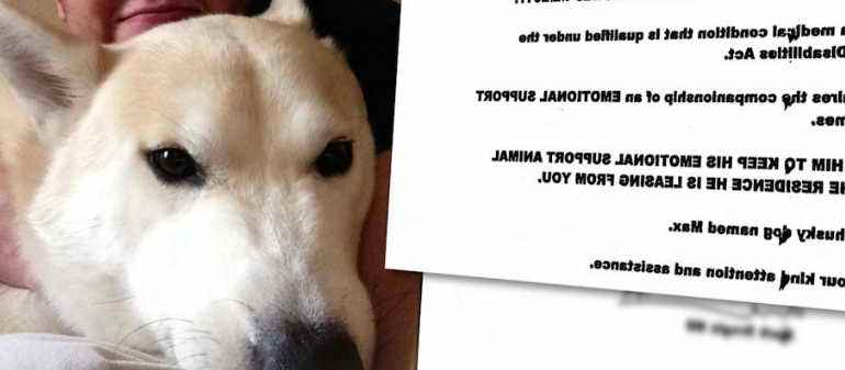 Doctors Note For Emotional Support Dog