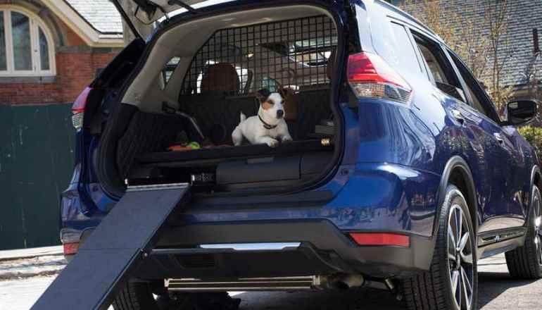 Nissan Rogue Dog