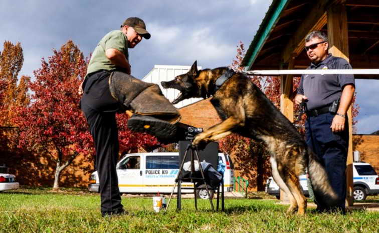 Police Dog Training Schools
