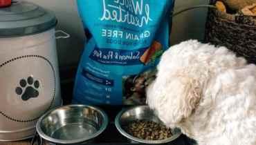 Wholehearted Grain Free Dog Food Reviews