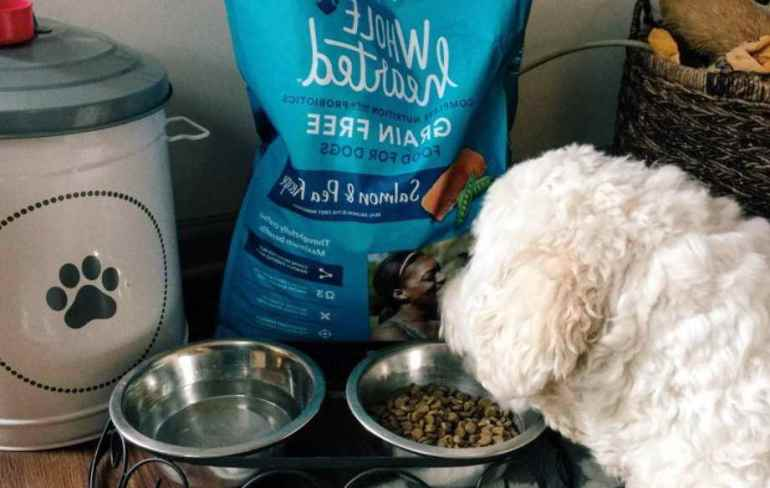 Wholehearted Grain Free Dog Food Reviews