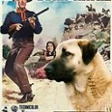 Anatolian Shepherd Dog Art - The Searchers Movie Poster  Canvas Print - Anatolian Shepherd Dog