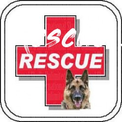 Image detail for -Search & Rescue Dog Collection  Skulls  - Rescue Dogs