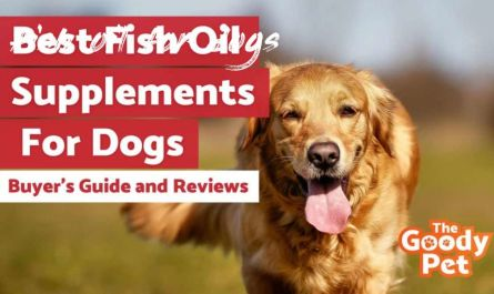 fish oil for dogs Best Pet
