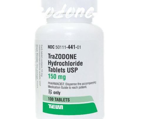 Trazodone For Dogs Best Pet