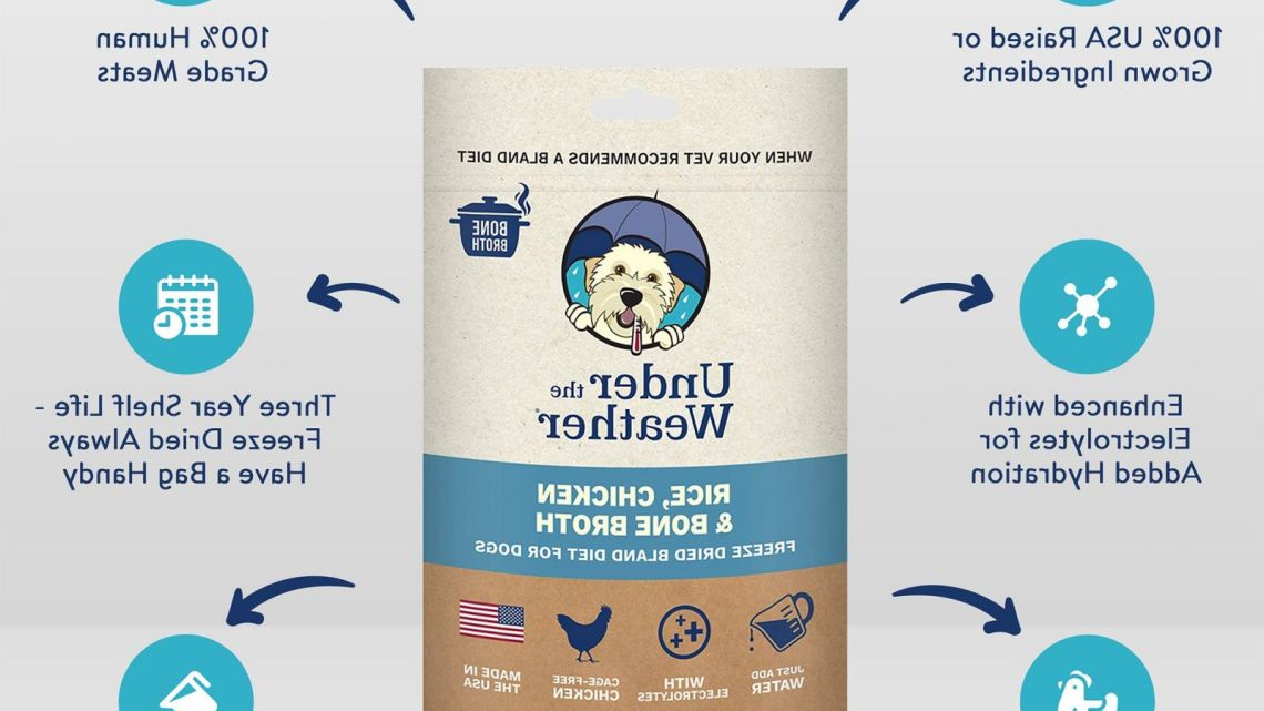 Chicken And Rice Bland Dog Food