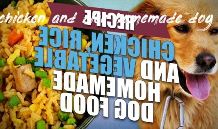 Important information about chicken and rice homemade dog food