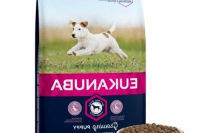 Things you should know about eukanuba dog food grain free