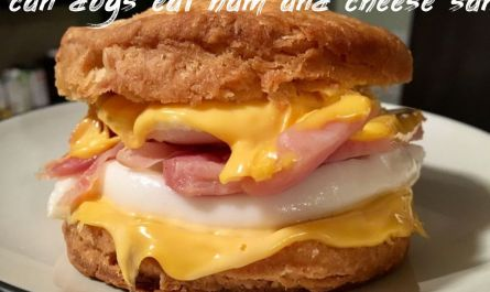 Information about can dogs eat ham and cheese sandwich