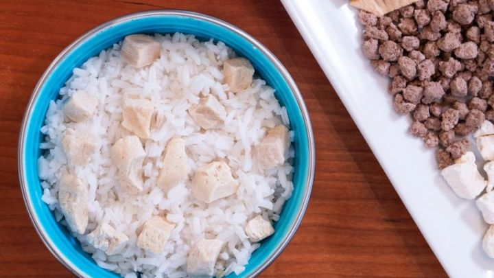 Chicken And Rice For Dogs Upset Tummy