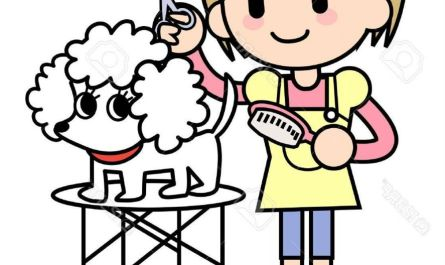 dog grooming clipart How To Find