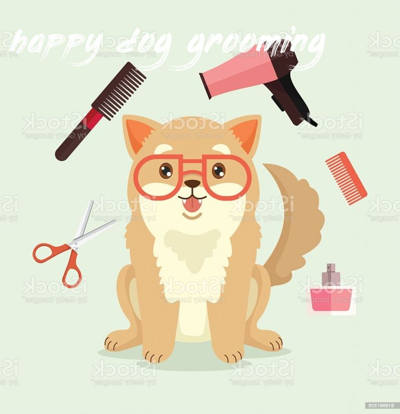happy dog grooming Cost