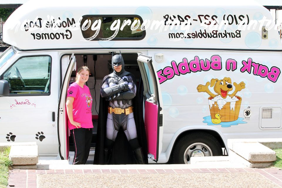 Mobile Dog Grooming San Antonio Buyer