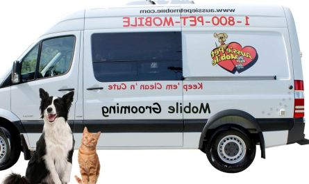 traveling dog grooming near me Review