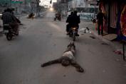 Straffet för misstänkta efter Hamas-rättegång
