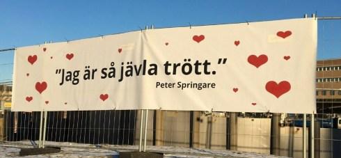 peter-springare-trott