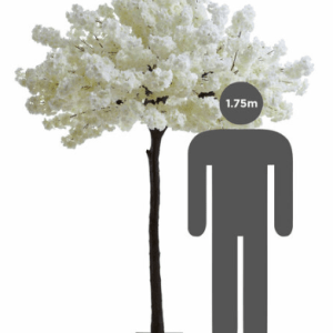 https://i2.wp.com/pettey-tredoux.co.za/wp-content/uploads/2020/07/Cherry-Tree-White-1.png?resize=300%2C300&ssl=1