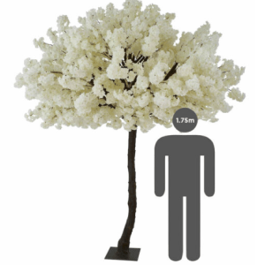 https://i2.wp.com/pettey-tredoux.co.za/wp-content/uploads/2020/07/Cherry-Tree-White-2.png?resize=300%2C300&ssl=1