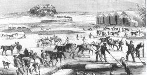 ice-harvest