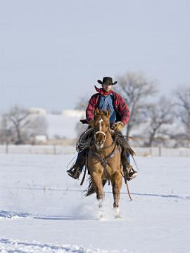 cowboysnow2