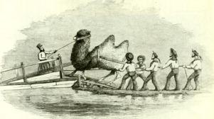 camel-loading-gh-heap