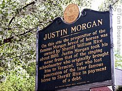 justin_morgan_sign