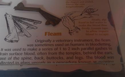 Fleam