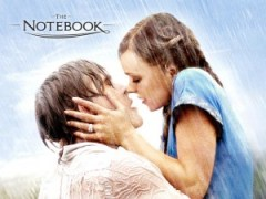 Ryan Gosling And Rachel Mcadams The Notebook 2