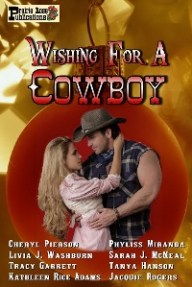 Wishing for a Cowboy Sm