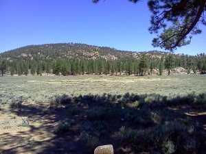 meadow where Belleville stood