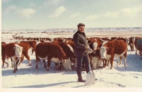 Deb Salonen rancher blog photo 1