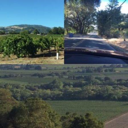 H vineyards
