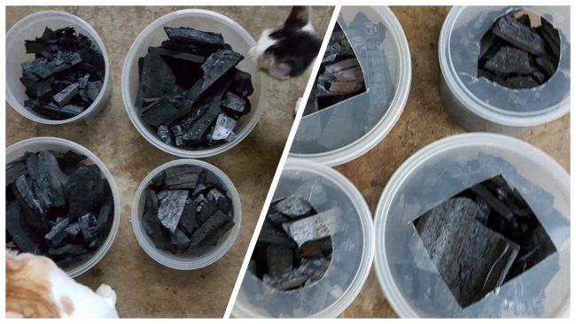 Cara Mudah Hilangkan Bau Najis Kucing 2